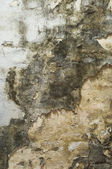 Dirty Mouldy Old Wall — Stock Photo