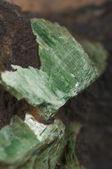 Torbernite Uranium Ore — Stock Photo