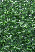 Green Crushed Glass — Stock Photo