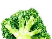 Broccoli the bottom view — Stock Photo