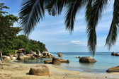 Tropical Lamai beach, Thailand — Stock Photo