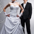 Stock Photo: Beautiful bride and groom