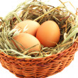 Egg in the basket — Lizenzfreies Foto