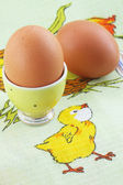Eggs on the tablecloth — Stock Photo