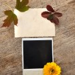 Blank photo frame — Stock Photo