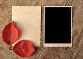 Alte leere photo frame — Stockfoto