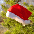 Royalty-Free Stock Photo: Santa Claus Hat on a natural Christmas tree