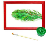 Picture of the green spruce branches — Stock Photo
