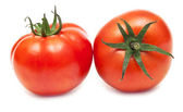 Two fresh tomato isolated on white background. — Stock Photo