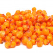 Frozen sea buckthorn — Stock Photo #4574014