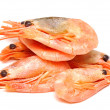 Shrimp on white background. — Stock Photo