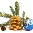 Isolated golden pine cone and blue Christmas ball — Stock Photo #4477824