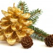 Golden pine cone and branch of Christmas tree — 图库照片