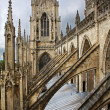 York Minster — Stock Photo