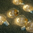 Light bulbs in song - Stock Photo