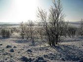 Kar vadisi — Stok fotoğraf