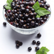 Stok fotoğraf: Crockery with black currant.
