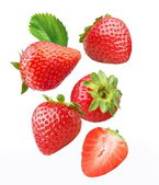 Caída de fresas. — Foto de Stock