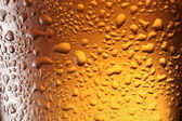 Close up shot of frosty beer glass. — Stock Photo
