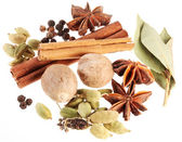 Asian spices on a white background — Stock Photo