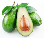 Avocado with leaves on a white background — Stock Photo