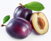 Plums on a white background — Stock Photo