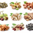 Collection of different varieties of nuts — Foto de Stock