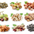Collection of different varieties of nuts - Stock Photo