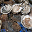 Fresh oysters are laid out on the ice. — Stock Photo #4638921
