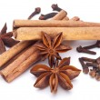 Cloves, anise and cinnamon isolated on white background. — Stock Photo #4639083