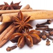 Cloves, anise and cinnamon isolated on white background. — Stock Photo #4639100