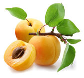 Apricots with leaves on a white background. — Stock Photo