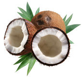Chopped coconuts with leaves on white background. File contains — Stock Photo