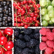 Stock Photo: Clourful berries