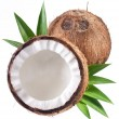 High-quality photos of coconuts on a white background. — Stok fotoğraf