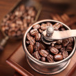 Roasted coffee beans in a coffee grinder. - Stock Photo