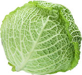 Image of cabbage on white background. The file contains a path t — Stock Photo