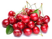 Image cherries on a white background — Stock Photo