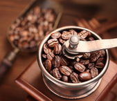 Roasted coffee beans in a coffee grinder. — Stock Photo