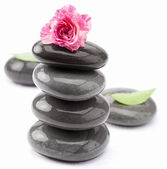 Spa stones with rose and leaves on a white background. — Stock Photo