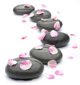 Spa stones with rose petals on white background. — Stock Photo