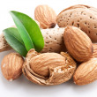 Group of almond nuts. - Stock Photo