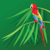 Parrot on bamboo leafs — Stock Vector