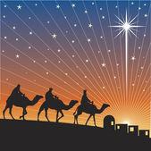 Shining star of Bethlehem. — Stock Vector