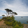 Small island in distance — Stock Photo #4157163