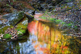 Mystical reflection — Stock Photo