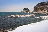 Snowy beach — Stock Photo