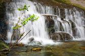Burzliwe wodospady w las lato — Zdjęcie stockowe