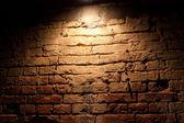Illuminated by a red brick wall — Stock Photo