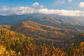 Taiga d'autunno — Foto Stock